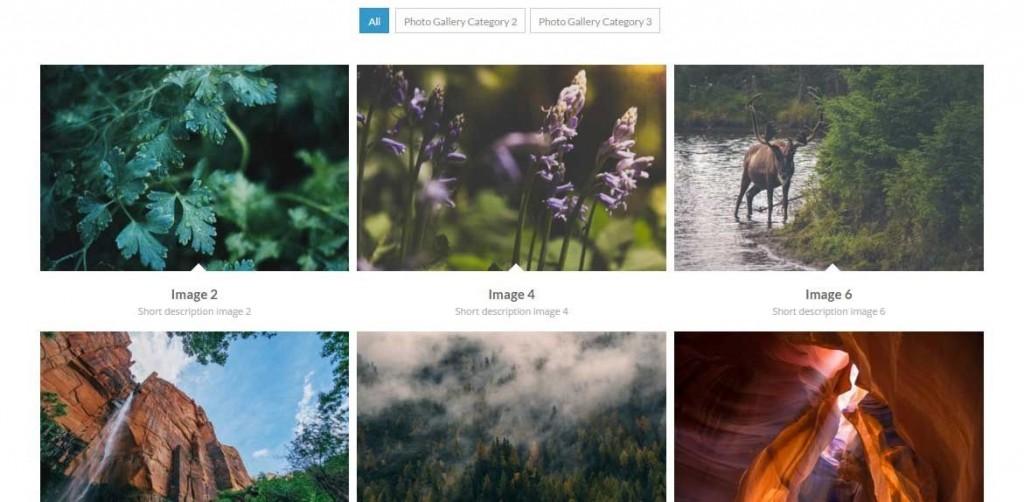 Magento portfolios en foto albums